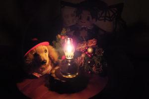 2018年X'mas「ハーバリウムランプ点灯・暗闇」