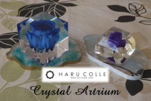 ハルコレの固めるハーバリウム「クリスタル・アートリウム」